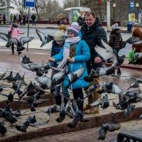 голби счастья :: Виктор Николаев