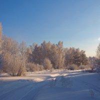 Снежная дорога, неба синева... :: Александр Попов