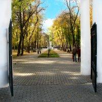 Добро пожаловать в осень!!! :: Михаил Болдырев