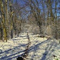 Последний мартовский снег.... :: владимир
