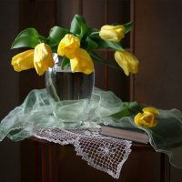 Жёлтые тюльпаны :: lady-viola2014 -