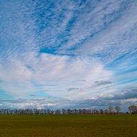Весна идёт... :: Андрий Майковский