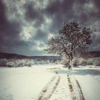 перед бурей :: Олеся Енина