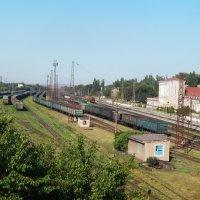 Товарные поезда :: Дарья Неживая