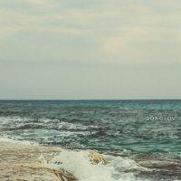 Cyprus 2013 :: Дмитрий Соколов
