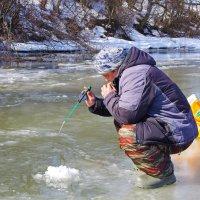 Ловись рыбка большая и маленькая! :: Ирина Нафаня