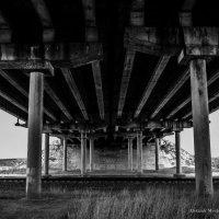 Bridge :: Alexandr Mozharenko
