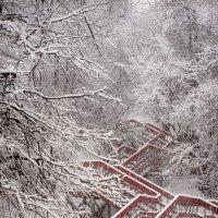 Снегопад в Коломенском... :: Андрей Войцехов