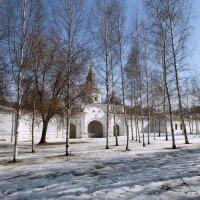 Весна в Измайлово :: Эльмира Суворова