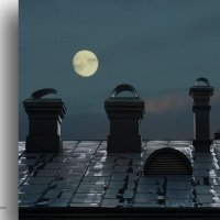 На крыше в лунную ночь. :: Аnatoly Polyakov