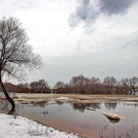 Прошлогодний вспомнился разлив... :: Лесо-Вед (Баранов)