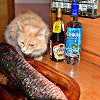 Пока я закушу, а потом и выпью! :: Михаил Столяров