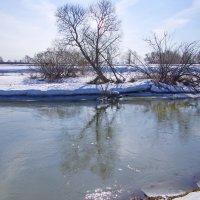 Река Шерна. :: Ирина Нафаня