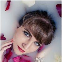роза в молоке :: Ольга Степанова