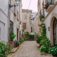 Каталония :: Alesia Avsievich