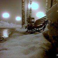Туман в парке :: Владимир Филиппов