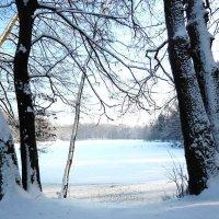 Вид на озеро :: Маргарита Батырева