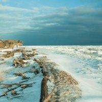 Зимой на Летнем береге :: Яна Старковская