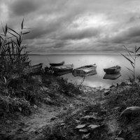 Пасмурный вечер на озере :: Андрей Иванов