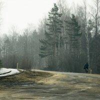 Утро :: Александр Ребров