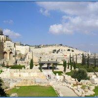 Прогулки по Иерусалиму :: Андрей Заломленков