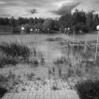 Денис Сухинин - Природа побеждает