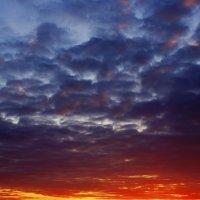 Закатное небо :: Сергей Добрыднев