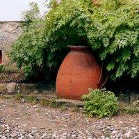 кувшин для сбора дождевой воды :: elena manas