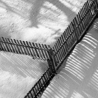 Тени на весеннем снегу :: Григорий Иванов