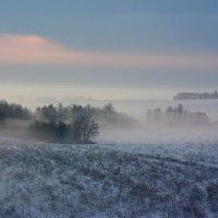 Утренний туман :: Вячеслав Ложкин