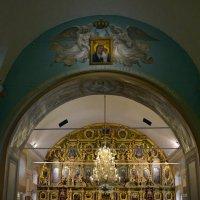 В Сампсониевском соборе :: Ольга