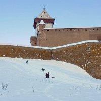 крепость зимой :: linnud