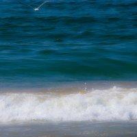 Пролетая над волной... :: Арина