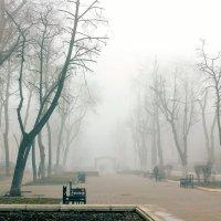 Утренний туман в городе :: Юрий Стародубцев