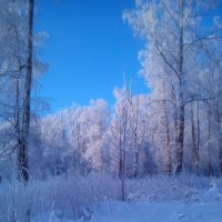 Зимняя сказка :: Валерия