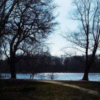 Лучи весеннего солнышка на глади озера :: Маргарита Батырева