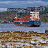 Мурманск. Прогулка вдоль западного берега Кольского залива. :: kolin marsh