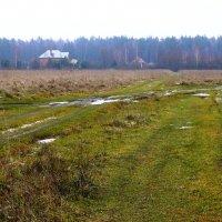 дороги провинции :: Леонид Натапов