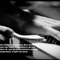 Музыка.... :: Валерия  Полещикова