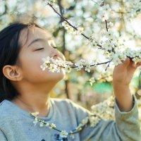 весна :: Assel Baluanova