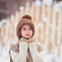 Снежок :: Ольга Родионова