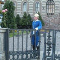 Девушки  Швеции  могут быть гвардейцами :: Виталий  Селиванов