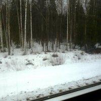 Из окна электрички :: Mary Коллар