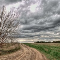 облака.трава.дорога. :: юрий иванов