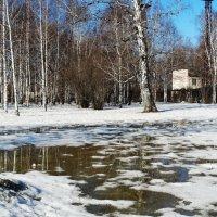 Весна :: Александр Подгорный