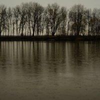 Весенний дождик ... :: Игорь Малахов