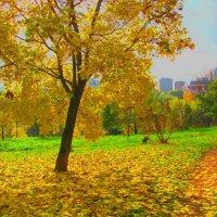 Осеннее золото. :: Александр Атаулин