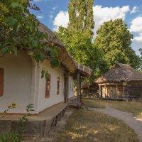 Сельский дворик :: Андрей Нибылица