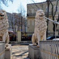 Львиный мост :: Юрий Тихонов