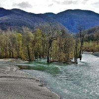 река Мзымта :: Дмитрий Михайлиди